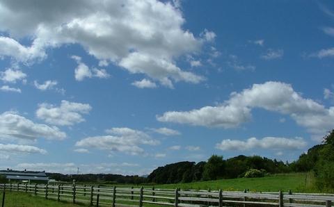 えこりん村の牧草地