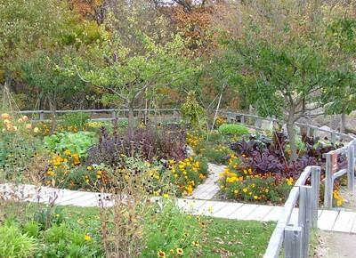 楽しい川辺の庭
