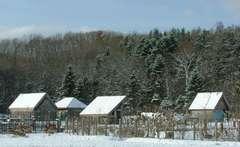 雪に覆われた外国の村!?
