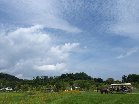 夏の雲と秋の雲と それから馬車