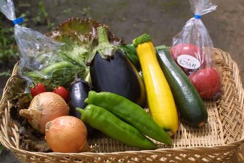 野菜いっぱい♪