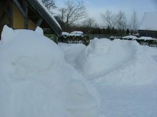 アルパカコンビの雪像揃う!
