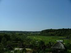 2009年9月 えこりん村