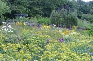 銀河庭園の奥にあるお庭です