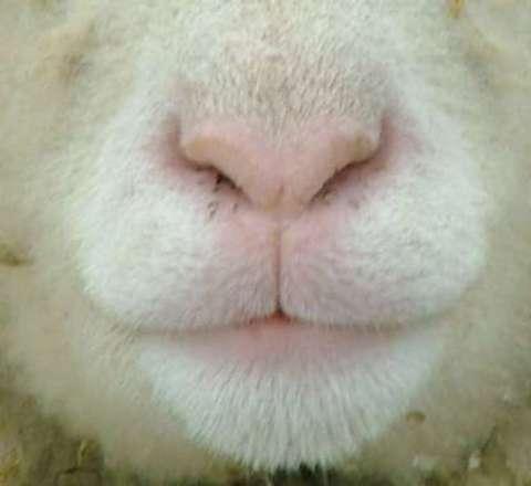 鼻水がちょっと…ごめんなさい…