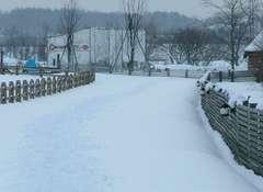 馬車道も雪の道