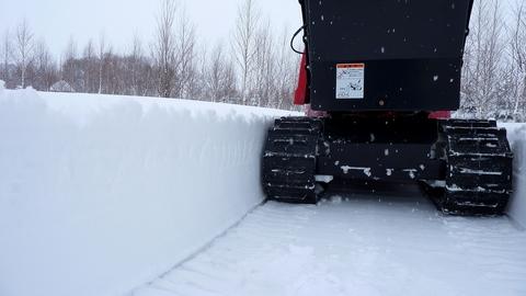 あって良かった、手押し除雪機