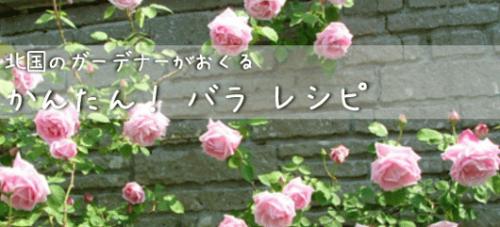 GardenBaner.png