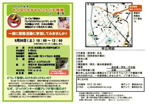seiyouoomaruhanabachi.jpgのサムネイル画像
